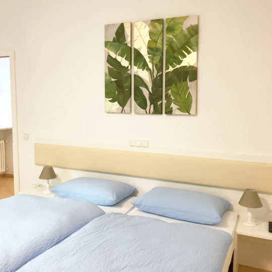 http://www.rosengartenbz.com/wp-content/uploads/2018/06/manzoni-premium-bright-rooms-540x540.jpg